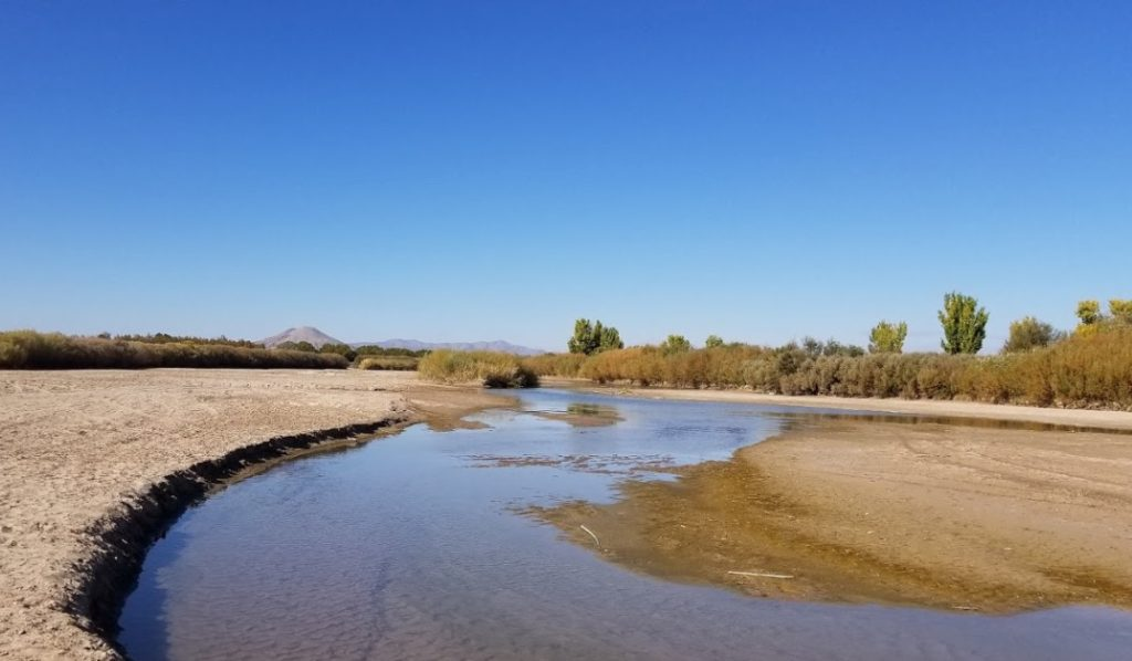 The Mesilla Valley Bosque State Park to Resume Operations on June 24th - Las Cruces Directory
