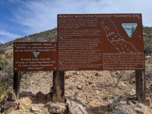 prehistoric trackways national monument b88a5e9 1 300x225