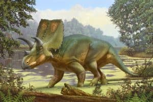 Sierraceratops Dinosaur Discovered Near Truth or Consequences